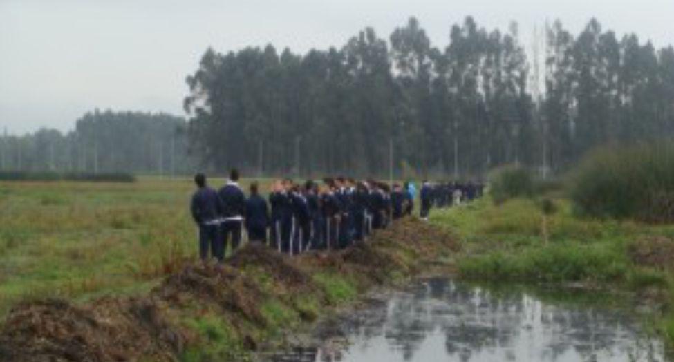 Proyectos Colombianos de Educacion y Medio Ambiente